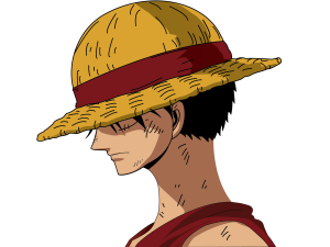 Image 1: Luffy from One Piece, with a partially hidden face, but wearing his trademark Straw Hat. how to find anime by picture